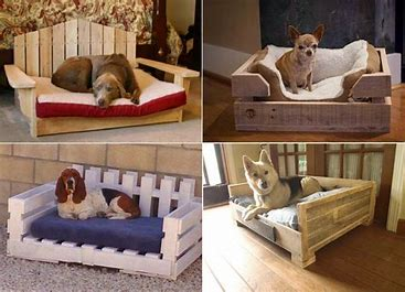 Pet adoption: give your dog a place to call his own like a doggy bed