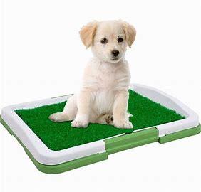 pet care puppy pads