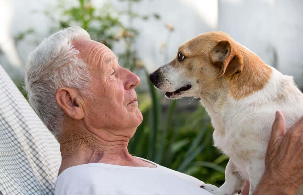 pet adoption and the elderly