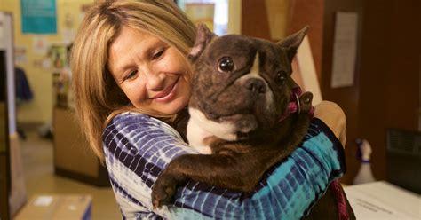 Pet Adoption: best pet