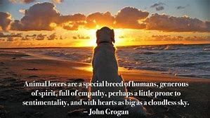 pet care pet lovers