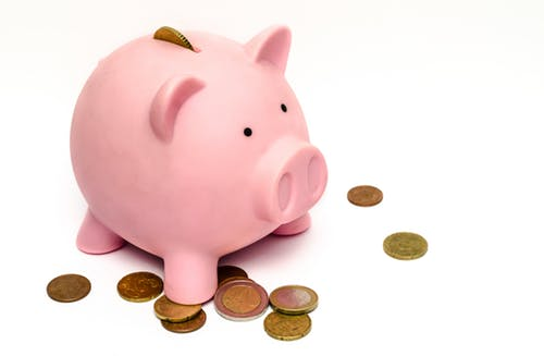 pet daoption: budgeting for your pet