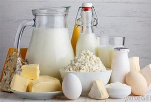 reduced calorie dairy products