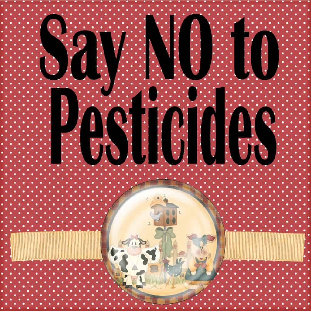 healthy foods without pesticides