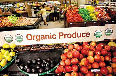 organic products tend to be healthy foods