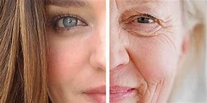 whyaluronic acid reverses aging