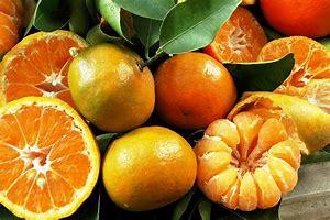 citrus rich in hyaluronic acid