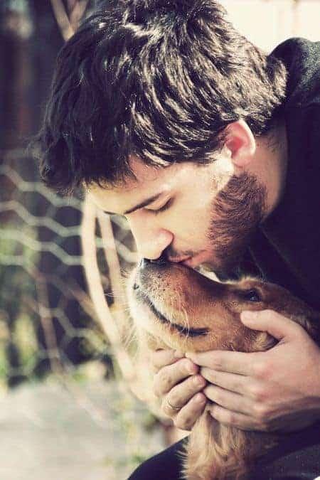 pets need love